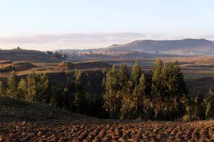 Éthiopie_6_©lecorbeau